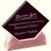 Corporate Trophies - Carved Stone